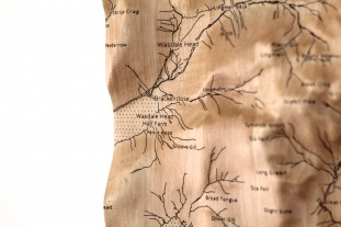 Maple Wall Map